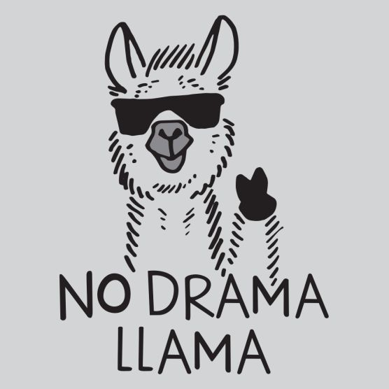 English Hack: Slang–Drama Llama!