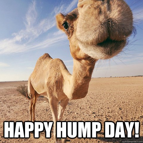 English Hack: English Slang–Hump Day